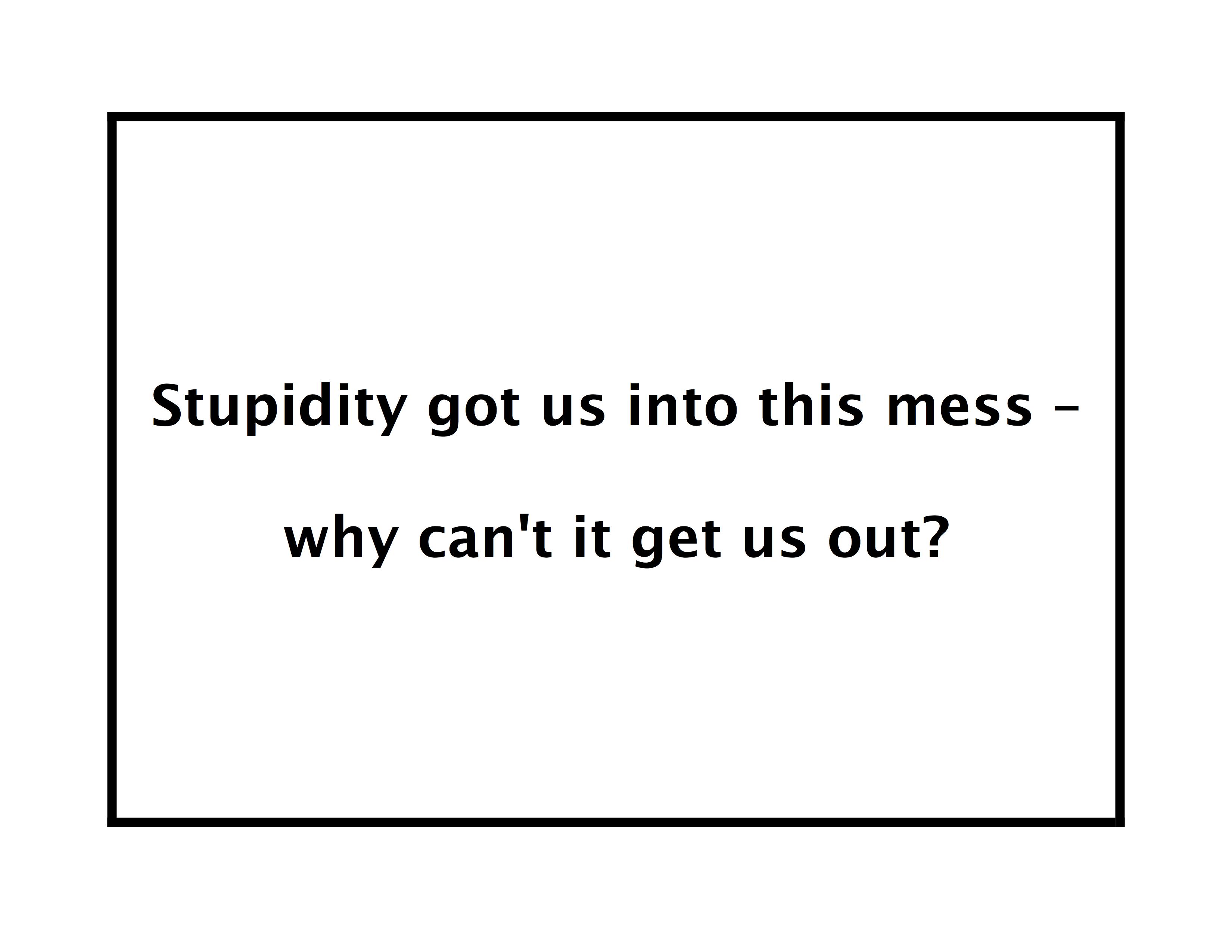 StupidityGotUsIntoThisMess